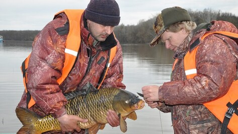 Пятеро рыбаков из Павловска объявили войну местным браконьерам
