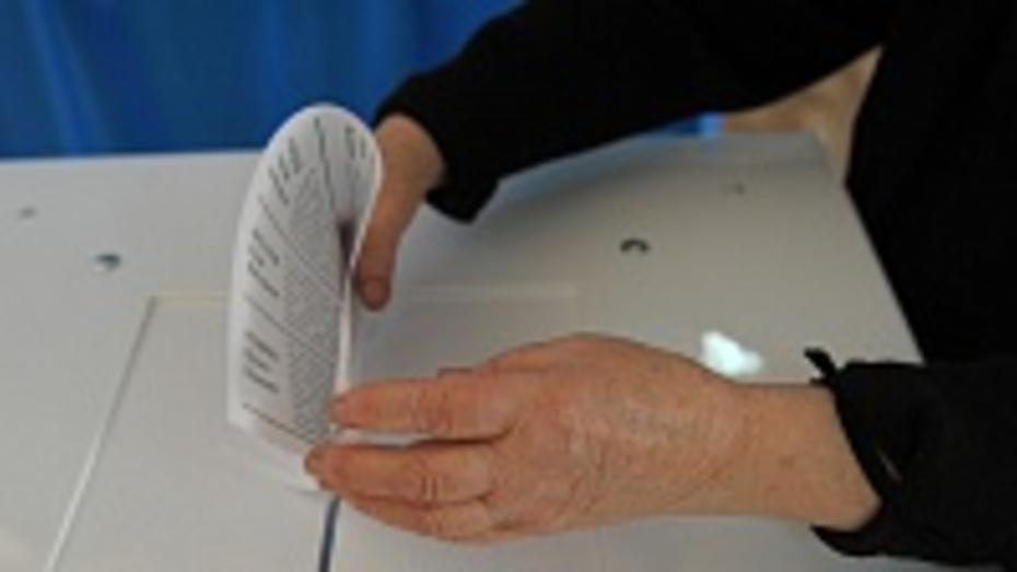 За полдня в Воронежской области проголосовали почти 30% избирателей