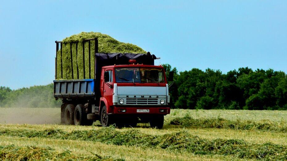 Калачеевские аграрии собрали рекордный урожай ранних зерновых