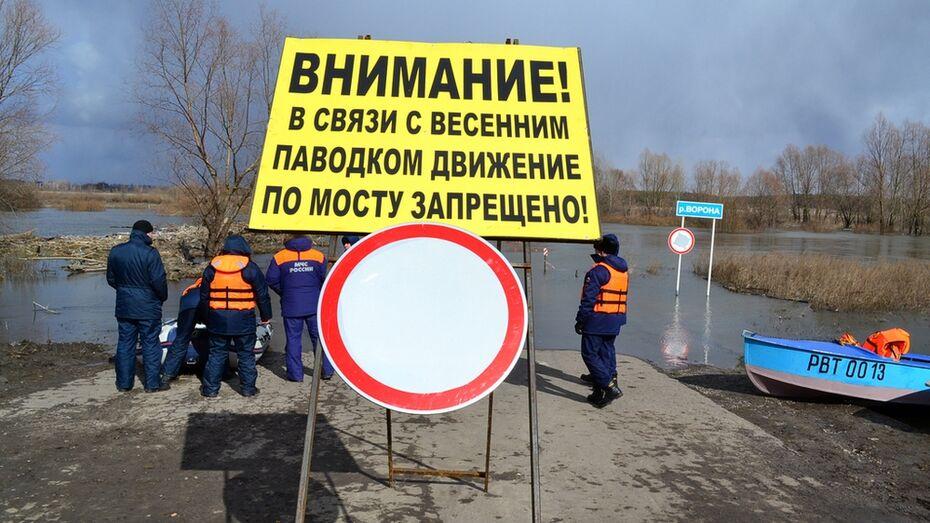Московские спасатели проверили переправу у грибановского села Власовка