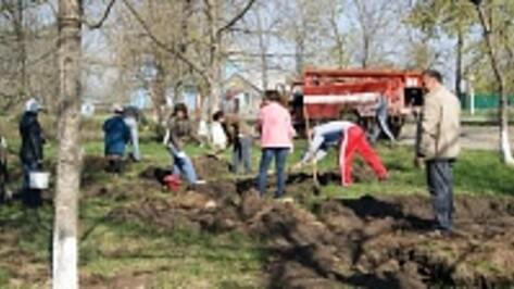На Всероссийский экологический субботник «Зеленая весна» вышли более 500 поворинцев