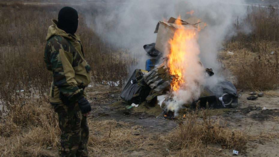 Воронежские наркополицейские уничтожили 32 кг наркотиков