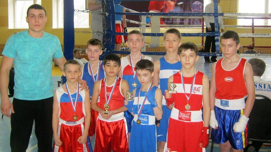 Богучарские боксеры получили 8 медалей на областном турнире