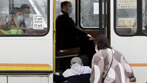 В Воронеже на линию вышло рекордное число маршруток с начала режима самоизоляции