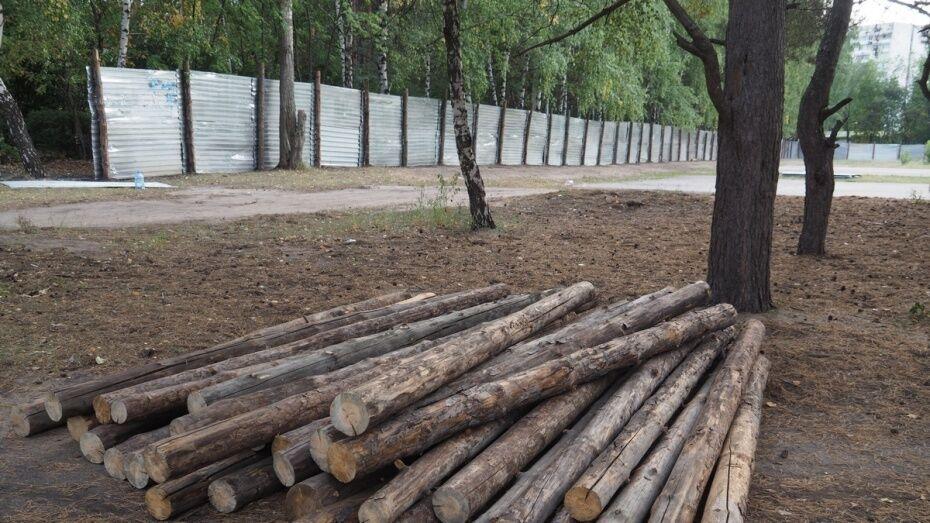 Арендаторы воронежского «Танаиса» решили судиться с мэрией за постройки в парке