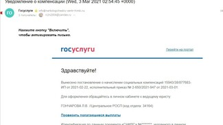 Мошенники стали обманывать россиян от лица «Госуслуг»