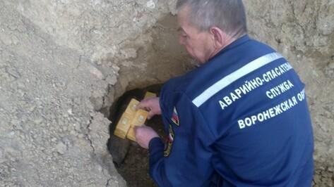 В центре Воронежа строители наткнулись на мину