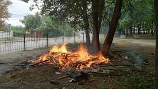 В Воронеже в районе СХИ неизвестные сожгли остановку