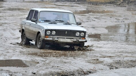 Оппозиционер Алексей Навальный попросил отремонтировать дороги в Воронеже