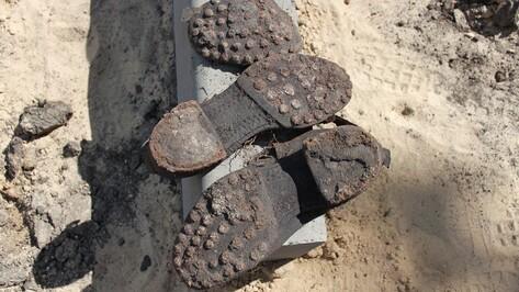 В Бринкманском саду завершились поиски останков немецких солдат (ФОТО)
