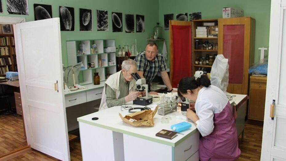 Эксперты изучат воронежских клещей в московской лаборатории