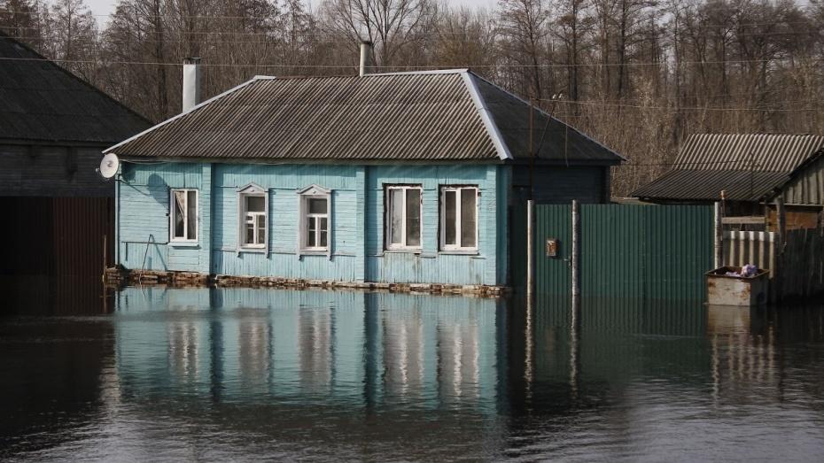 На определение границ зон затопления в Воронежской области выделят до 66 млн рублей