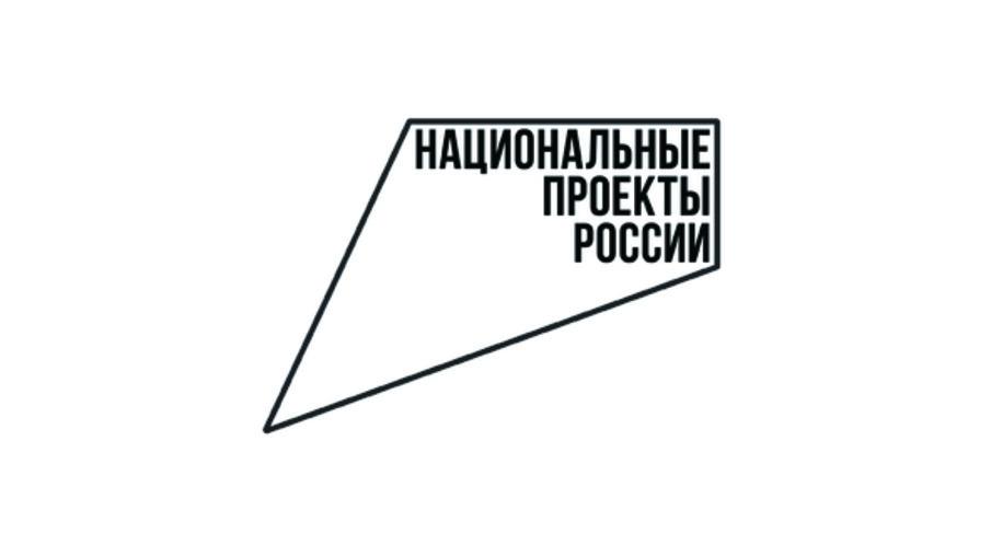 Реализация нацпроектов в Воронежской области