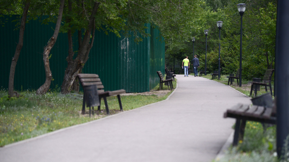 В Ленинском районе Воронежа благоустроят 10 скверов