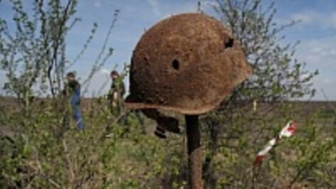 За 10 дней под Воронежем поисковики подняли останки 28 советских солдат и более 400 боеприпасов