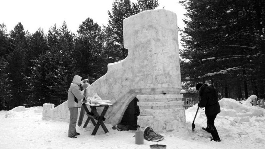 Молодые архитекторы Воронежа создадут парк аттракционов изо льда и елочных иголок