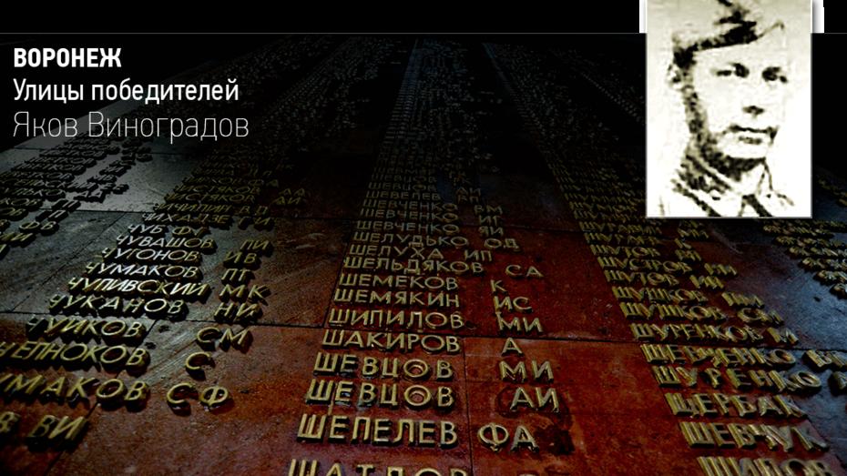 Воронеж. Улицы победителей. Яков Виноградов
