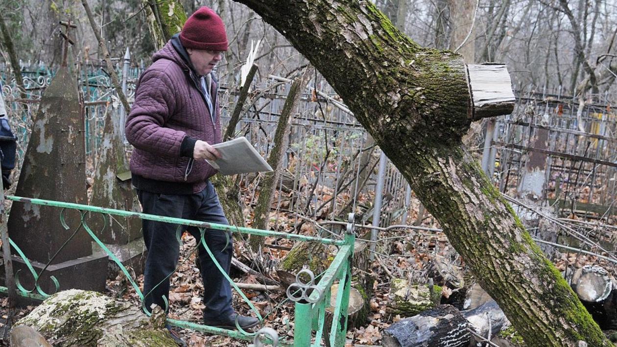 Упавшие деревья, забытые могилы. Кто виноват в неухоженности старейшего кладбища Воронежа