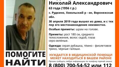 Волонтеры позвали на поиски пропавшего под Воронежем 63-летнего мужчины
