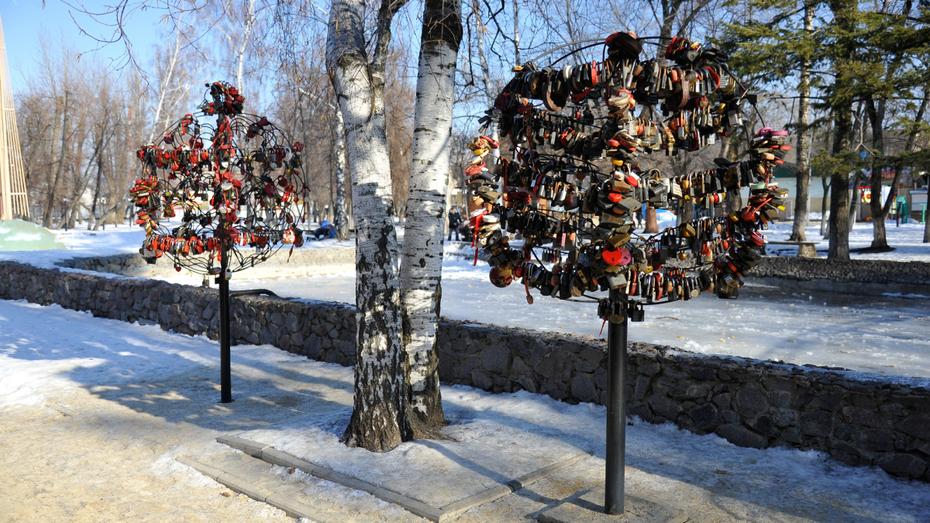 В Воронеже в День всех влюбленных поженятся 20 пар