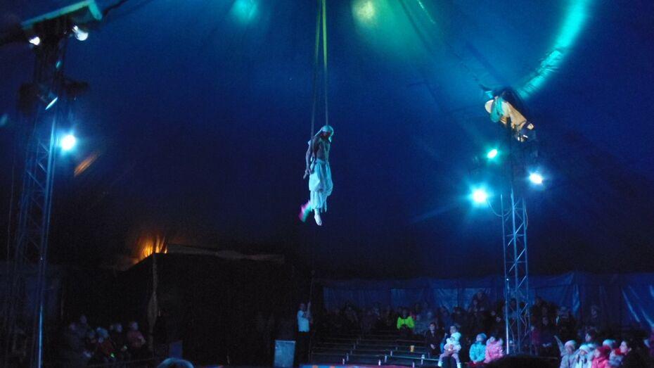 В Верхнем Мамоне впервые выступил цирк-шапито