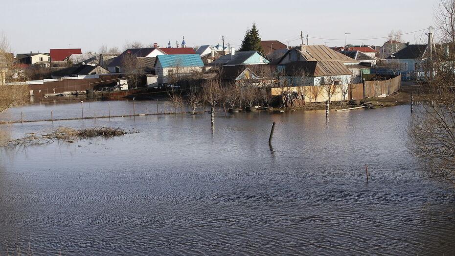 Воронежский губернатор поручил запретить строительство в зонах паводков