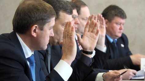 Обзор РИА «Воронеж». Какие программы представили кандидаты в мэры