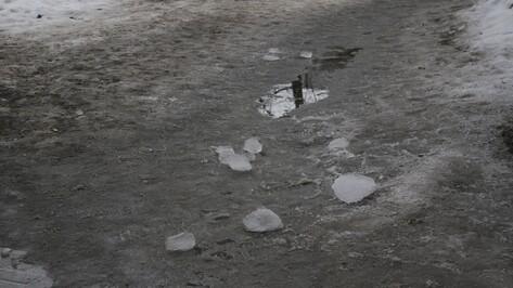 Прокуроры нашли нарушения при уборке наледи с крыш 4 школ и 4 детсадов Воронежа