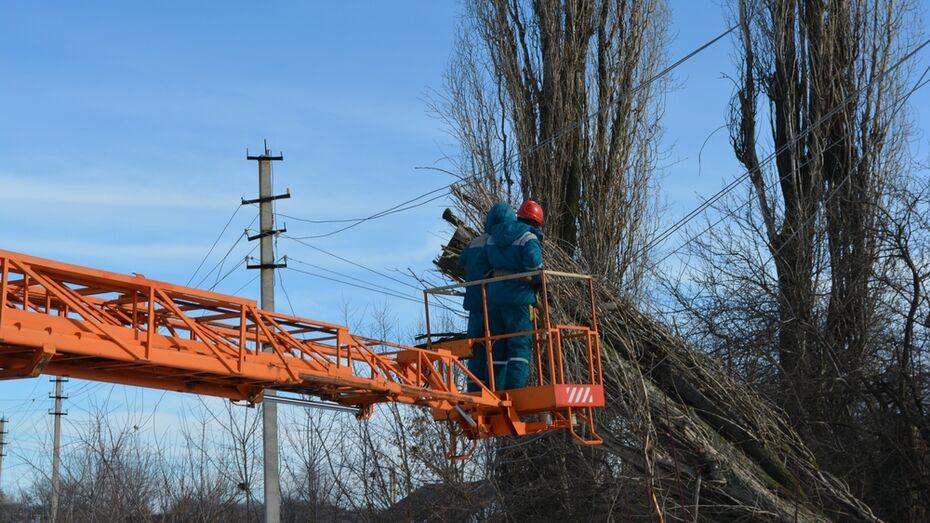 В Нижнедевицком районе сильный ветер повредил электрические провода в семи сельских поселениях