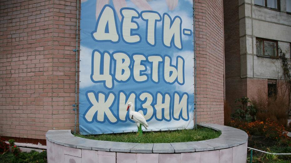 В Воронежской области за рождение второго ребенка будут выплачивать 200 тыс рублей