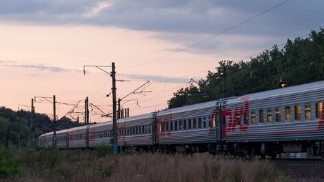 В Воронеже школьникам продлили до конца года льготы на проезд в электричках