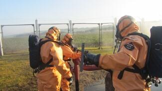 В Воронежской области эвакуированные из зоны утечки аммиака вернулись домой