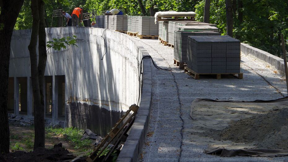 Из-за банкротства подрядчика парк «Орленок» в Воронеже откроют частично