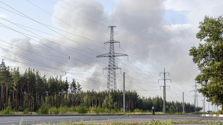В Лискинском районе масштабный пожар вплотную подошел к птичнику