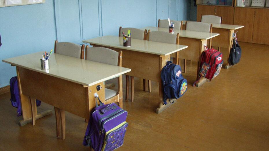 В Воронеже школьники уйдут на каникулы на неделю раньше