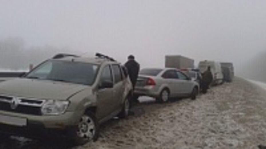 В Воронежской области вчера произошло 156 ДТП