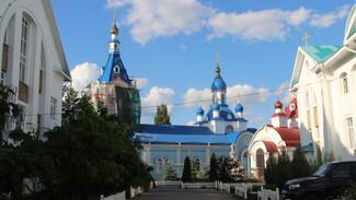 Самое красивое село выбрали в Воронежской области