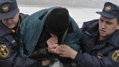 В промоины Воронежского водохранилища провалились 2 человека и собака