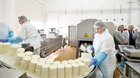 ФАС разрешила немецкой фирме выкупить сырзавод в Воронежской области