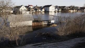 Максимальная выплата пострадавшим от паводка в Воронежской области составит 40 тыс рублей