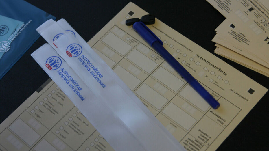 Воронежцев пригласили стать волонтерами Всероссийской переписи населения