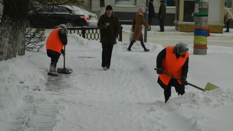 В Воронеже на борьбу с гололедом потратят 72,7 тыс т песко-соляной смеси