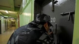 Адвокат Марк Фейгин: «Надежды Савченко в Лефортово нет»