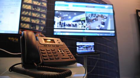 Использовать цифровые сервисы для бизнеса смогут более 20 фермеров Воронежской области