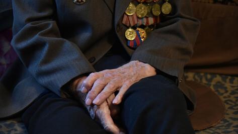 Воронежский Росреестр проведет горячую линию для ветеранов и детей войны 13 мая