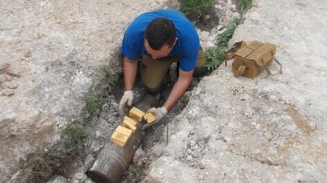 В Воронежской области уничтожили 82 боеприпаса времен войны