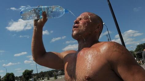 В Воронежской области объявили штормовое предупреждение по жаре