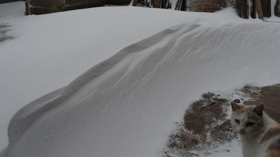 Нижнедевицкие села в минувшие выходные засыпало снегом