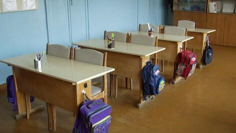 Власти направят 75 млн рублей на капремонт 94 воронежских школ