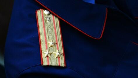 Трое жителей Воронежской области избили полицейских